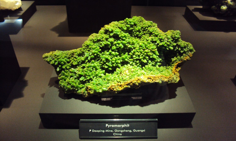 Bergstadt Freiberg mit TU Freiberg, Terra Mineralia Bergbaumuseum Silbermannorgel