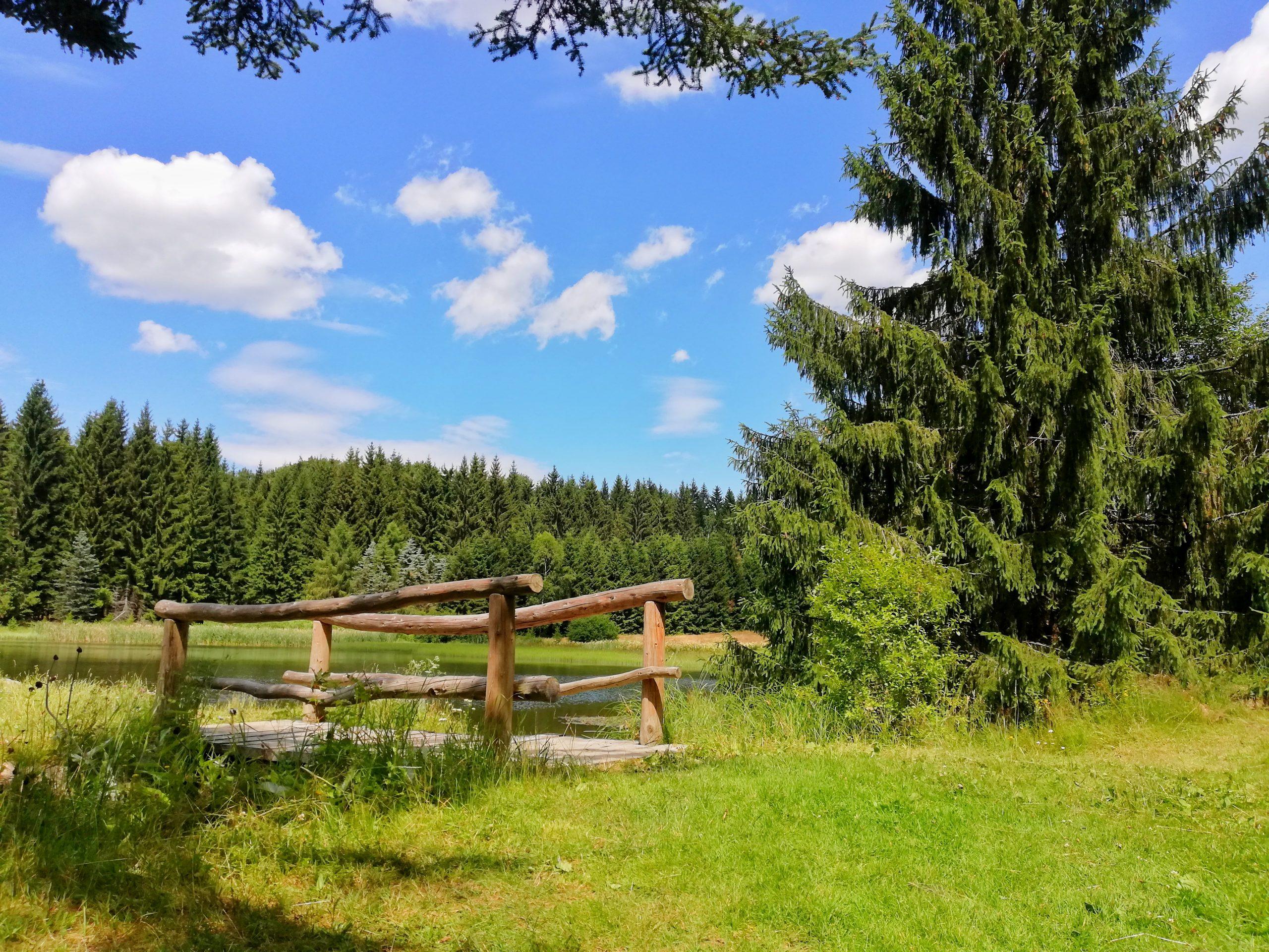 Sommerurlaub Hotel Lindenhof Erzgebirge